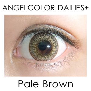 angeldailies_palebr_y