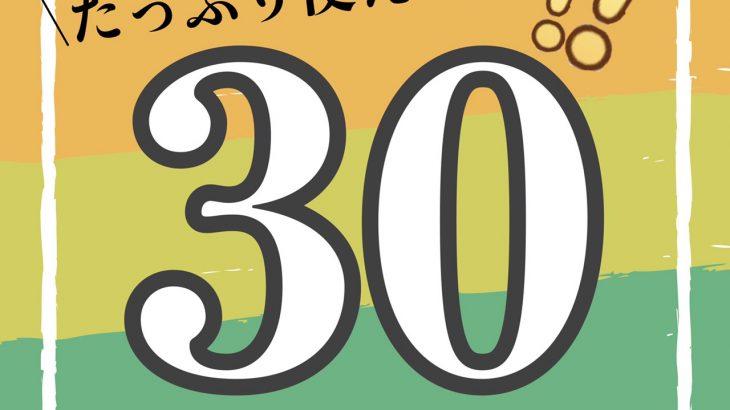 【コスパ最強】たっぷり使える30枚入りおすすめ1dayカラコン特集